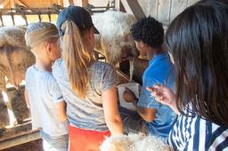 Ein Tag auf dem Bauernhof mit dem Zürcher Tierschutz