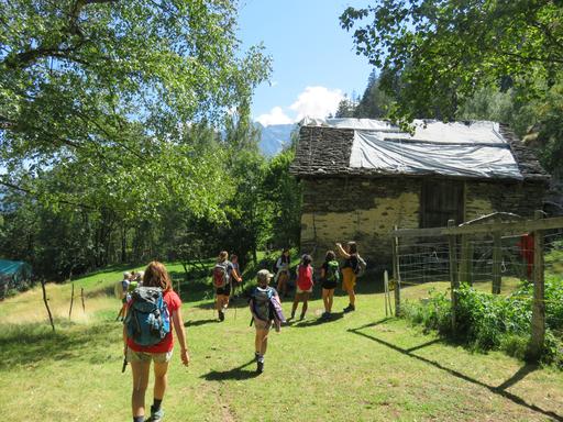 Mädchenpower auf der Alp