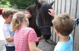 Abenteuerwoche für Tierfreunde mit dem Zürcher Tierschutz