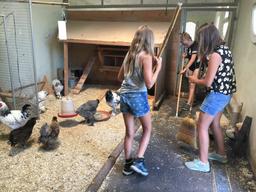 Tierpflegewoche im Chrüzacher